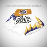 Шорты «Fairtex BS0623»